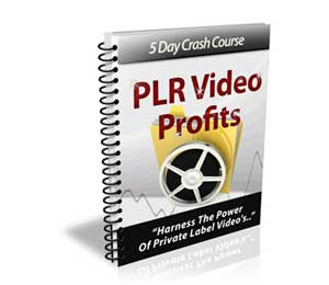 PLR Video Profits
